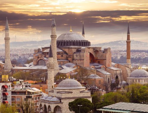 The Alfa Logistics Family 在土耳其伊斯坦布尔迎来了一位新成员